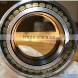 SL045007PP Double-Row Full Complement Cylindrical Roller Bearing SL045007 PP,SL 04 5007 PPNR