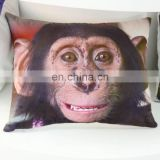 Wholesale custom latest design short plush digital printing cushion covers
