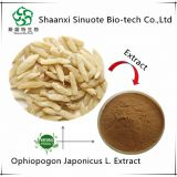 100% Natural Pure Ophiopogon Japonicus Extract