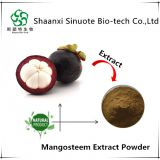 Hot Sale 100% Pure Mangosteen Fruit Extract Powder