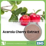 China Supplier provide Dietary Supplement Natural Vitamin C Organic Acerola Cherry extract with 17% Vitamin C                                                                         Quality Choice