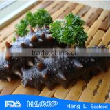 HL011 Sell Dried Or Frozen Sea Cucumbers for export