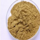 Green tea extract,PLANT EXTRACT,Solvent Extraction  Catalogue of plant extract