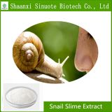 Factory Supply Pure Cosmetic Ingredient Snail slime extract powder