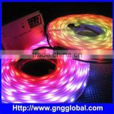 dmx rgb led rope lighting ,Flexible DMX Controllable LED Strip CE & RoHS                                                                         Quality Choice