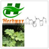 high quality Macleaya cordata extract powder,60% Sanguinarine