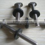 thin step T bolt with EDPM washer