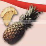 Inquiry about Aseptic Pineapple Puree