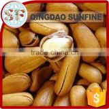 Mytest Cheap bulk organic pine nuts