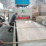 Belt Conveyor Wood Board Jointer Press Machine