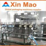 Barreled Water Filling Machine, Automatic 5 Gallon Filling Machine, 19L Water Filling Machine