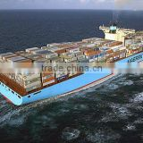 LCL FCL ocean sea freight service to Netherlands Srilanka