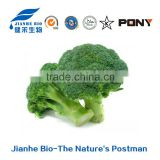 High Quality Green Organic Broccoli Sprouts Sulforaphane Powder