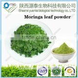 factory supply moringa leaf extract powder, moringa oleifera leaf powder, bulk moringa powder with free sample