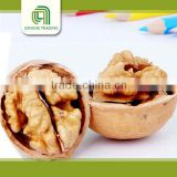 bulk raw light amber pieces walnut kernels price