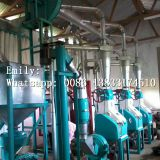 12-14TPD grinder machine maize milling machines south africamaize milling machine flour mills for sale