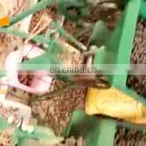 Low price lotus seed nut screening sorting machine Lotus seeds nuts sorter grader machine
