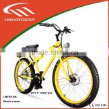 2013 new popular electric bicycle beach cruiser for man 350w wih fat bike