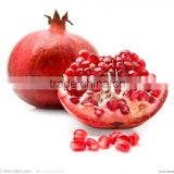 Natural Anti-oxidant Pomegranate Bark Extract Powder