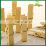 Bamboo stock clothes clips pegs