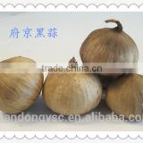 solo garlic black garlic fermented natural black garlic for sale