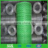 Pvc coated hexagonal wire mesh/chicken wire mesh -- good quality and service