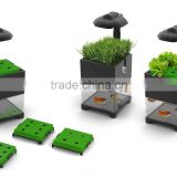 New development mini aquaponics fish tank for sale