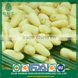 China Supplier High Quality Siberian Pine Nut Kernels for Deep Using