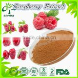 raspberry extract raspberry ketone weight loss