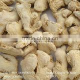 seasoning herb single spice organic dried root ginger