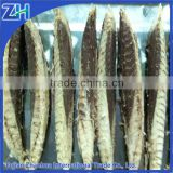 dried bonito fish flakes lions on sale