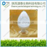 High purity vitamin C derivatives Ethyl Ascorbic Acid CAS no.86404-04-8 VC ethyl ether/3-O-Ethyl-L-ascorbic acid