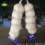 Newly listed pure white garlic,5pcs,200g