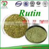 GMP Factory 95% Rutin NF-11 Sophora japonica extract powder 98% quercetin Powder Sophora japonica extract