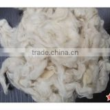 Chinese New best quality carpet grade washed sheep wool with Permethrine free no tar no paint and no PP