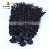 100% virgin malaysian curly hair
