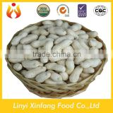 best selling products import wholesale peanuts in shell raw organic peanuts ground nut in shell