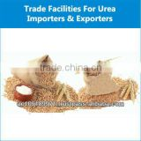 High Quality Fresh Soft Milling Wheat for Sale