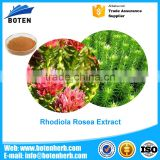 China manufacturer Functional food additives safe nature and health rhodiola rosea extract with A Discount