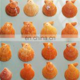 DIY natural seashell color style charm shell accessories for jewelry finding