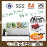 New Material PET 1.5mm No Frame Picture 2014 Nice Decoration 3d Pictures of Map with PVC Frame