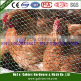 heavy chicken wire fence, chick wire netting 1/4, 1/2 ,3/8, 3/4 inches
