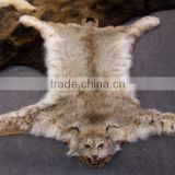 Taxidermy synthetic faux unstuffed plush animal skins