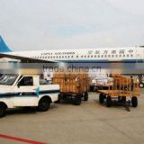 dhl air freight rates logistics company Shanghai shipping agent air cargo from China to Herne