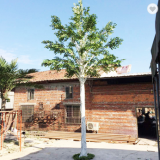 10meters height white trunk artificial birch tree