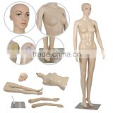 "Standing Female 68.9""-32.2""-24""-33.8"" Adult Full Body Mannequin Dress Form Base"