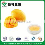 100% Pure Frozen Mango Concentrate Fruit Juice Powder