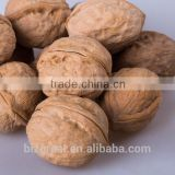 Supply with Chinese Bulk Walnuts in Shell for Sales