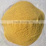 Cotton seed protein feed additive China factory supply with competetive price