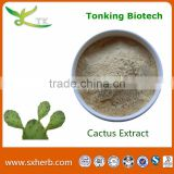 Weight Loss supplement Herbal Extract Cactus powder